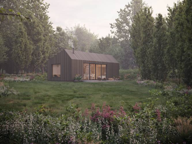 """Steeds meer mensen kopen een stukje bos om een tiny house te bouwen. """"Noem het maar een coronavlucht"""""""