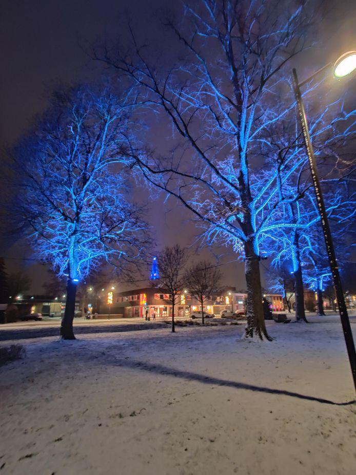 Blauw uitgelichte bomen onder een wit laagje sneeuw in het Mark Tennantplantsoen in Doetinchem.
