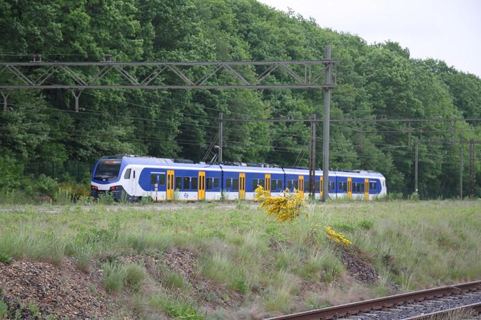 De stilgevallen trein in de buurt van station Ede-Wageningen.