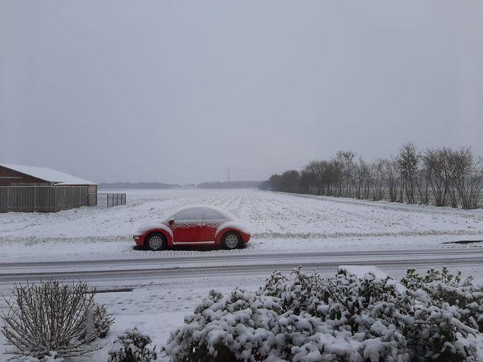 Het uitgestrekte landschap, gepakt in een deken van sneeuw.