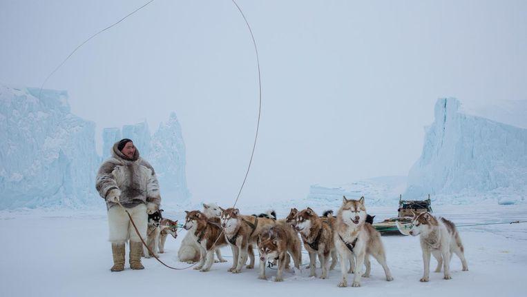 Inuit met sledehonden. Het sociale gedrag van de dieren fascineerde Tinbergen. Beeld Foto Cristina Mittermeier / Getty