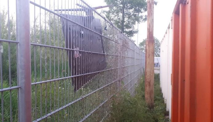 De verdachte gooide een televisie over het hek van het afvalbrengstation.