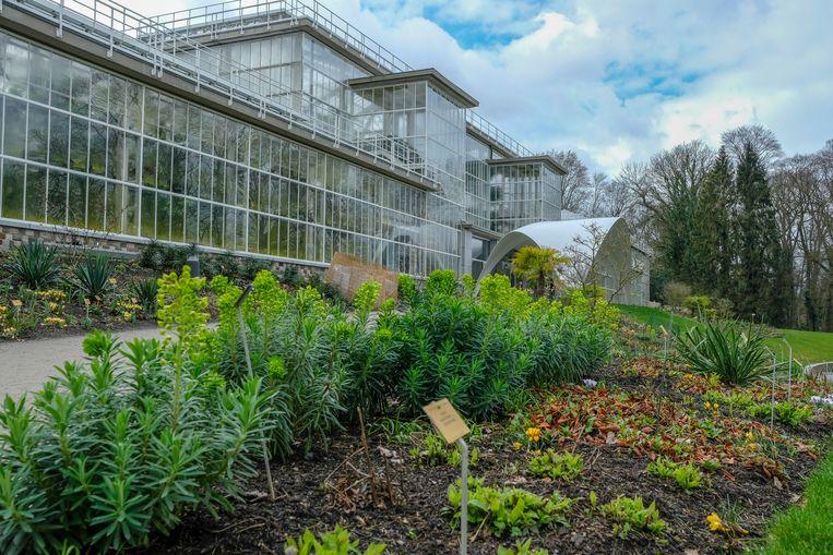 De plantentuin van Meise.