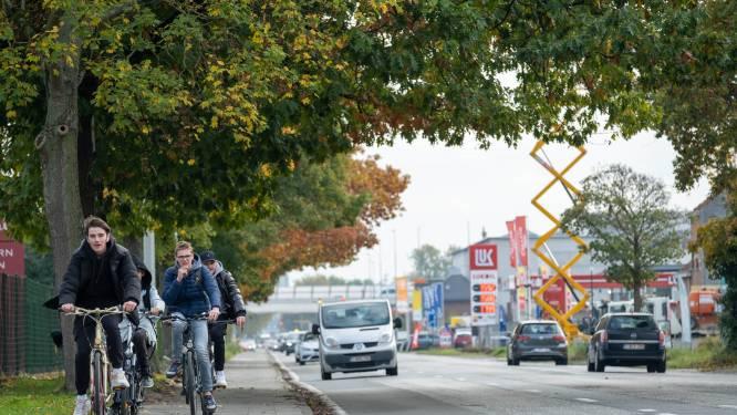 """Studie op komst voor heraanleg Antwerpsesteenweg: """"Winst op alle vlakken zo groot mogelijk maken"""""""