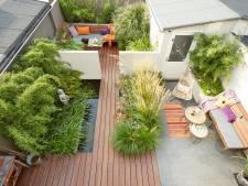 Deze Zwolse stadstuin wordt misschien wel de landelijke Tuin van het jaar 2019