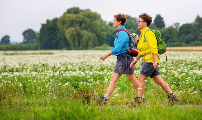 Wandelaars op de eerste wandeldag van de 103e editie van de Nijmeegse Vierdaagse.