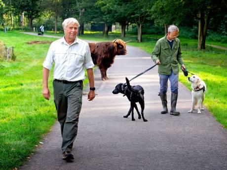 Hondenbaasjes opgelet: er gaat het een en ander veranderen bij de Rottemeren