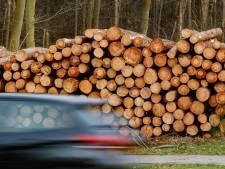 Bomen Liesbos Etten-Leur gaan neer