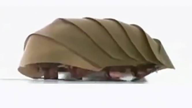 Deze 'kakkerlakrobot' kan je leven redden