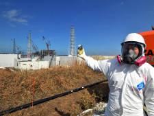 """Les émissions radioactives de Fukushima n'ont produit """"aucun effet néfaste sur la santé"""", selon l'ONU"""