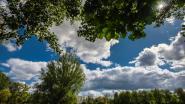 Gemeente zorgt voor zomeraanbod: van lokale ontdekkingen tot verborgen plekjes