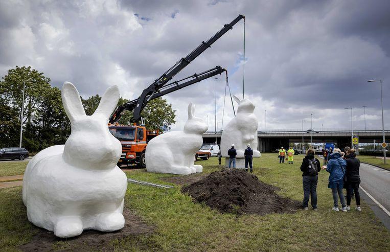 Een van de drie reuze konijnbeelden (Berm Bunnies) wordt geplaatst in het Amsterdamse Havengebied. Beeld ANP