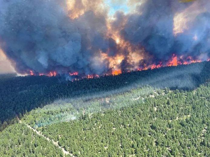 De snel oprukkende natuurbrand in British Columbia, gezien vanuit de lucht