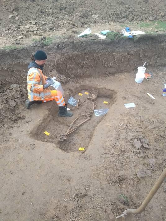 Het skelet dat aan de teen van de Waaldijk tussen de Peperstraat in Oosterhout en restaurant Altena werd gevonden door de medewerkers van Raap.