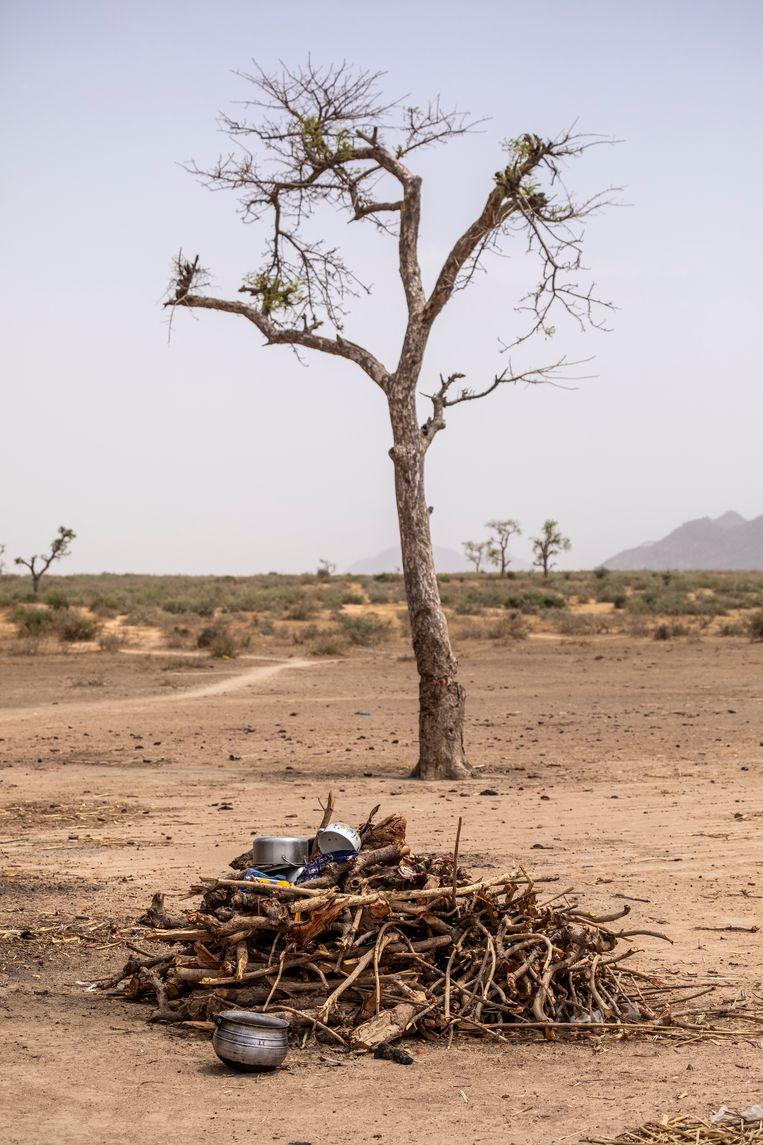 Bomen in de weide omgeving zijn omgekapt voor brandhout om op te koken. Beeld