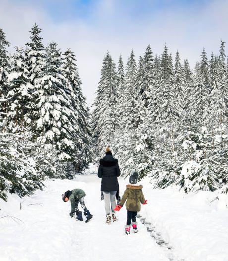 Les Hautes Fagnes à nouveau accessibles ce week-end