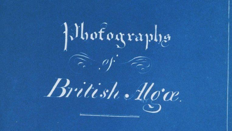 Photographs of British Algae van Anna Atkins Beeld .