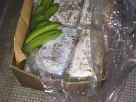 Drugscriminelen gebruikten fruitoverslagbedrijf voor invoer van 650 kilo cocaïne