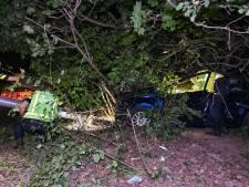 Auto botst tegen boom in Tilburg: automobilist (27) ernstig gewond