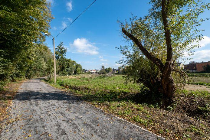 De Struikheidestraat in Muizen kreeg een onverhard wegdek