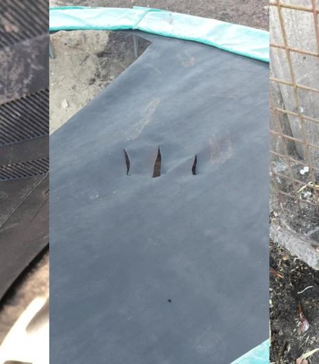 Spoor van vernieling in Eerbeek: konijnen ontsnapt, banden lek gestoken en trampolines kapot