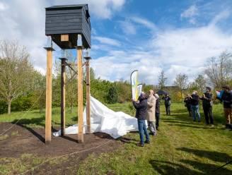 Vleermuizen krijgen eigen zomerverblijf in arboretum