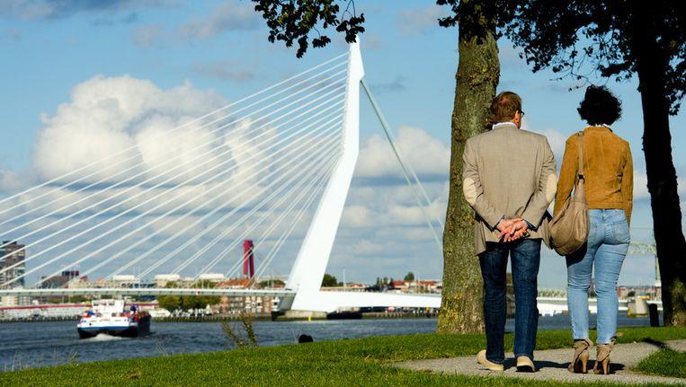 Zicht op Rotterdam Beeld ANP