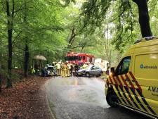 Frontale botsing op Gortelseweg tussen Vierhouten en Emst