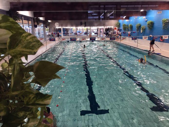 De lessen vinden plaats in het zwembad van Tremelo.