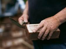 Toch plek voor tiny houses in Vijfheerenlanden? Woningcorporatie biedt stuk grond aan