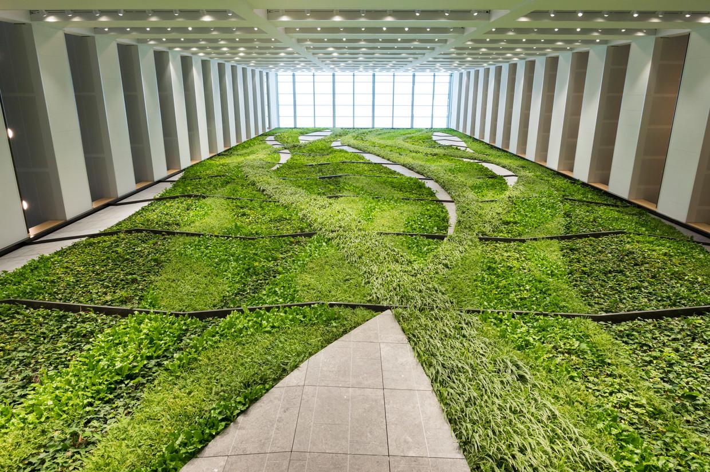De groene wand van  60 meter hoog. De planten groeien en bloeien, mede dankzij schijnwerpers.  Beeld Maarten Boswijk