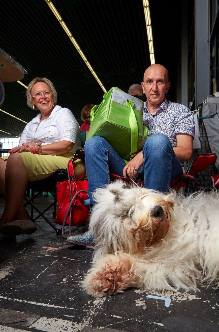 Anna Anka (1), Old English sheepdog, van Conny Loest en Paul Roeland. Anna Anka heeft een Poolse vader Beeld Isabella Rozendaal