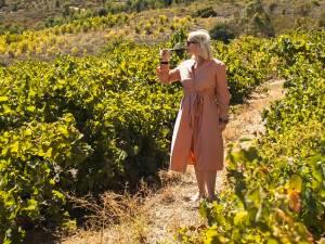 """Antwerpse brengt eigen wijnen op de markt: """"Wijn is het mooiste product ter wereld"""""""