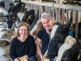 Pieter heeft hart voor koeien, Jeannet heeft hart voor kaas