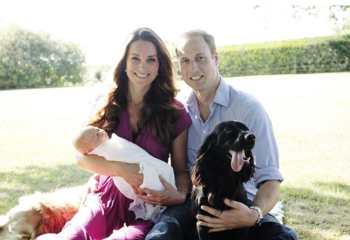 Hun overleden hond Ludo staat op deze foto.