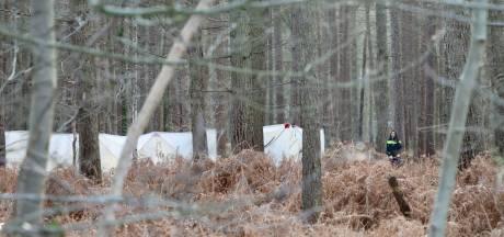Lichaam gevonden in bos bij Denekamp