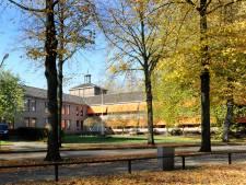 Kap van lindes Burgemeester de Kuijperlaan Veghel; aanplant nieuwe bomen in bouwplan
