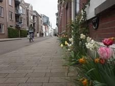 Geveltuintjes populair: stad telt na drie jaar ruim 500 tuintjes