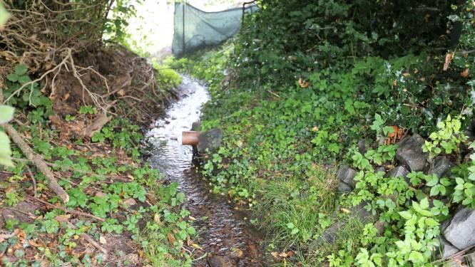 Gedaan met vieze geurtjes en afvalwater in de beek: stukje Kasteelbrakelsesteenweg in Lembeek krijgt nog dit jaar gescheiden riolering