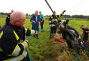 Vrijwillige brandweerman Willem van Roessel trekt een koe uit de sloot.