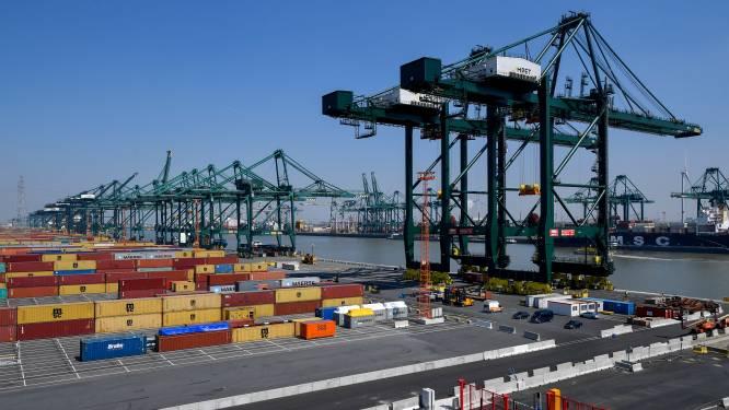 Grote drugsvangst in Antwerpse haven: 359 kilo cocaïne in container gevonden