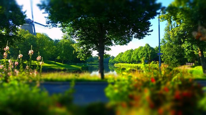 Vanochtens vroeg was het al mooi!
