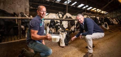 Plan van Twentenaren moet zuivelmarkt flink op z'n kop zetten: 'Het moet eerlijker voor de boeren'