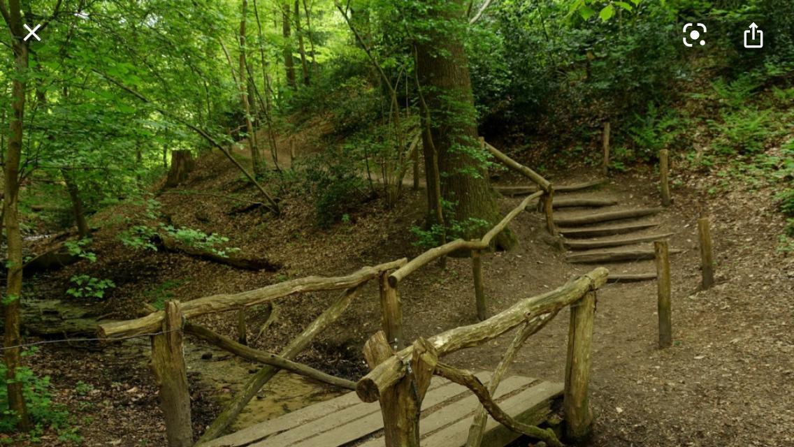 Het houten bruggetje zoals het er recent nog stond.
