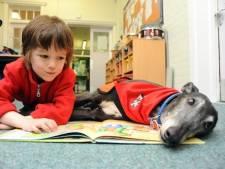 Danny, le chien de lecture