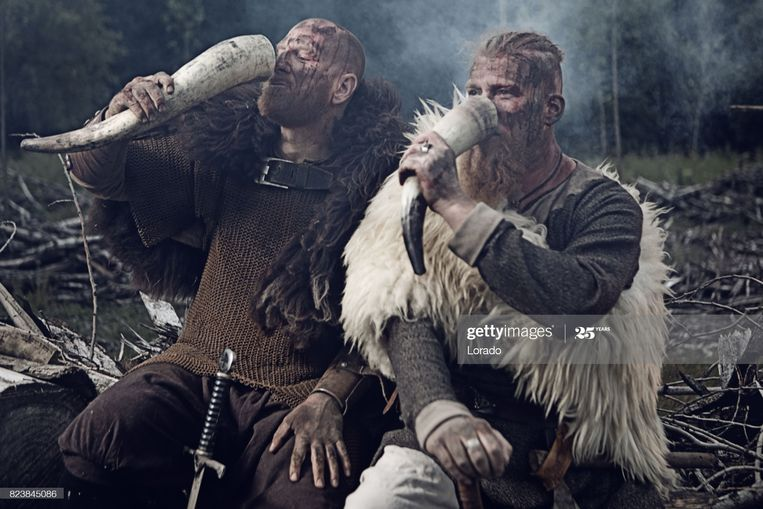 Two Authentic Caucasian Bearded Viking Warriors in Outdoor Forest Setting Beeld Getty Images