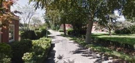 Pension voor honden en katten is splijtzwam in Rielse buurt
