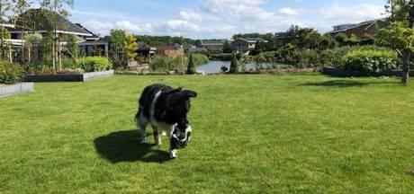 Bianca komt helemaal tot rust in haar tuin