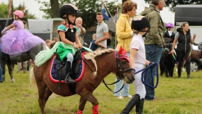 Plezier voor peuters op pony's