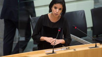 """Sminate terug in Vlaams Parlement: """"We hebben goed standgehouden"""""""